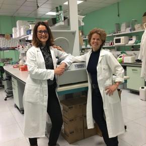 I talenti che tornano al DRI: obesità e diabete