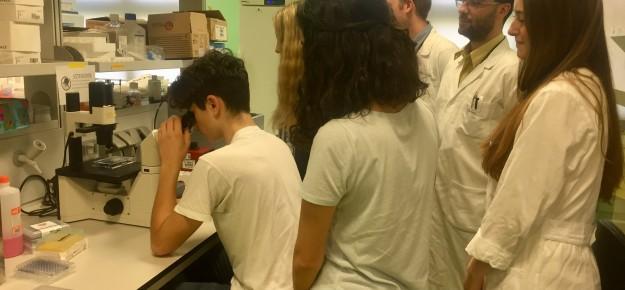 Il DRI apre le porte agli studenti con il progetto di alternanza scuola-lavoro