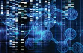 Il diabete di tipo 1 è anche una questione di geni: parte nuovo progetto al DRI
